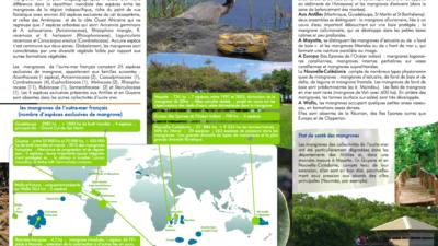 IFRECOR publication print